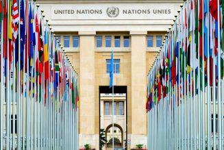 ONU generaliza Blockchain